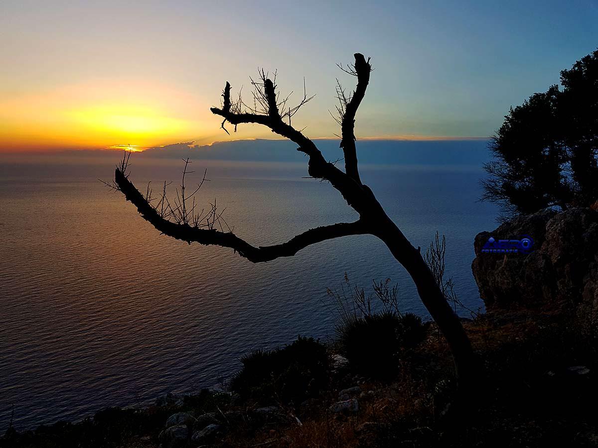 Mallorca 360 Grad Video Rundgang